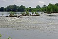 Meung-sur-Loire (Loiret) (9091816488).jpg