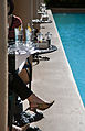 Miami - Biltmore hotel - 0403.jpg