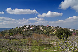 Community settlement (Israel) - View of Mikhmanim