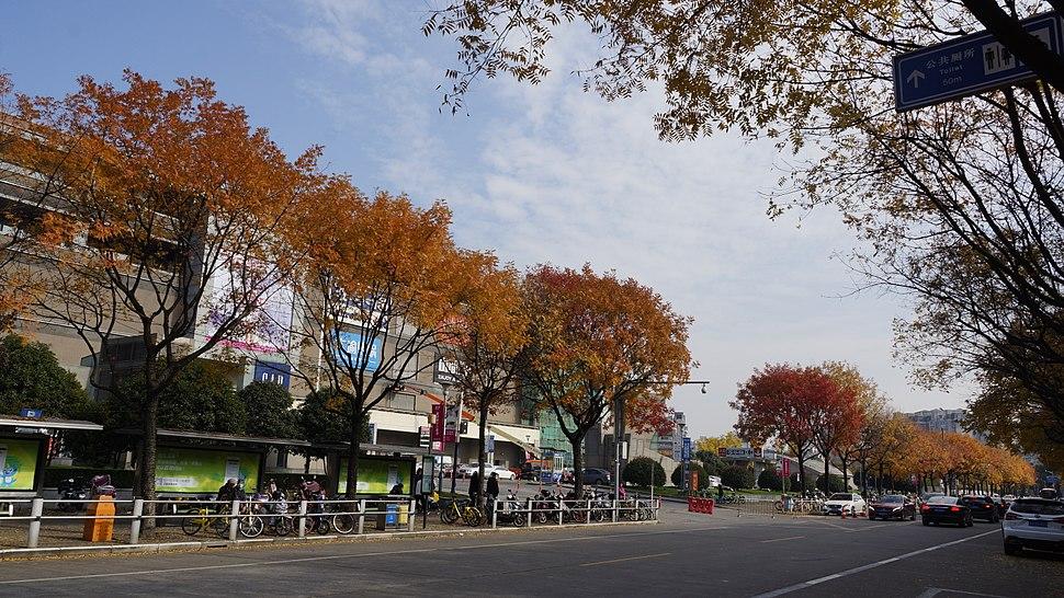 Mingdu road at Sky Mall, Minhang .jpeg