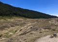 Montane Savannah Landscape in West Java.png