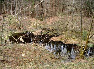 Dinkelberg - Moosloch funnel doline near Nordschwaben