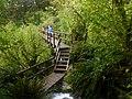 Moraine Creek Bridge - 2013.04 - panoramio.jpg