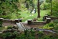 Morris Arboretum - DSC00540.JPG