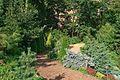 Moscow BotanicalGarden 2606.jpg