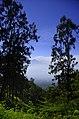 Mount Arjuna A.JPG