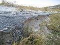 Mount Herschel, Rottnest-2.jpg