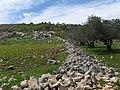 Mount ebal, near nablus 1.jpg