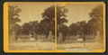 Mr. Hart's residence, Palatka, Fla, from Robert N. Dennis collection of stereoscopic views.png