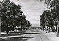 Munkegata (1948) (4034335156).jpg
