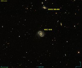 Image illustrative de l'article NGC 1019