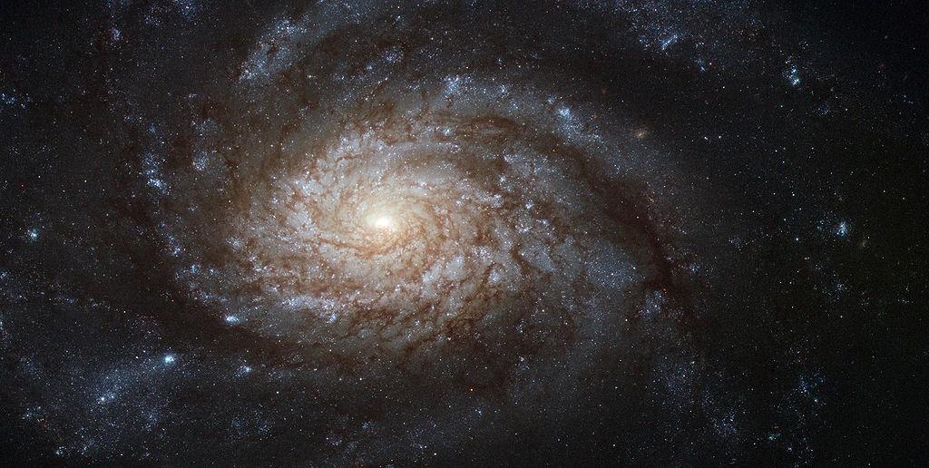 Астрономы из ESO опубликовали изображение гигантской звезды