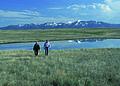 NRCSMT01078 - Montana (5003)(NRCS Photo Gallery).jpg