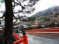 Nakabashi's Snowy Autumn.JPG