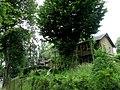Naleczow Nałęczów, Poland, Lubelskie - panoramio (19).jpg