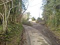 Narrow country road - geograph.org.uk - 319029.jpg