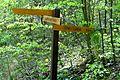 Naturschutzgebiet Ith - Wegweiser (2).jpg