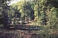 Naturschutzgraben.jpg
