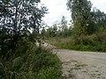 Nevelsky District, Pskov Oblast, Russia - panoramio (7).jpg