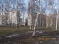 Nevsky District, St Petersburg, Russia - panoramio (81).jpg