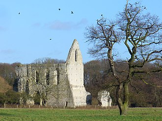 Ripley, Surrey - Image: Newark Priory geograph.org.uk 642708
