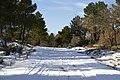 Nievecilla - panoramio (4).jpg
