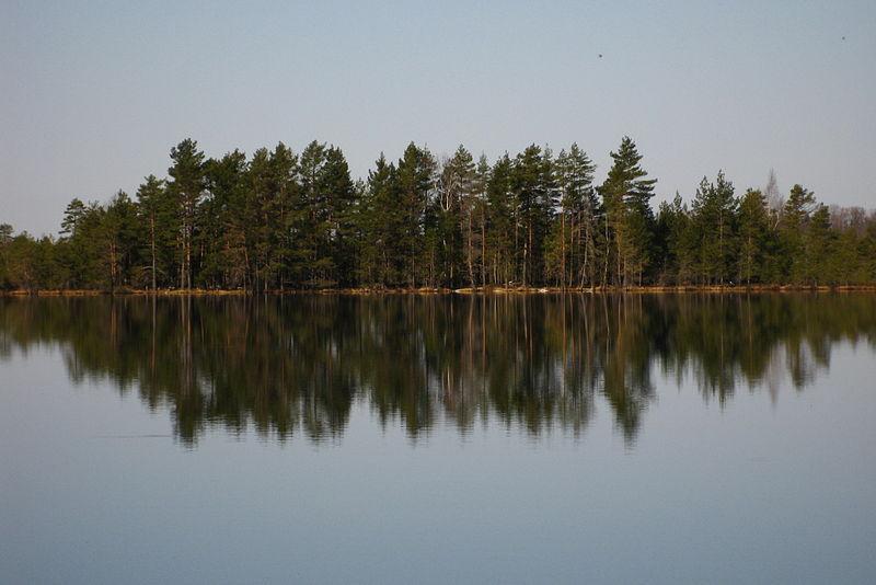 File:Nigula järv11.JPG