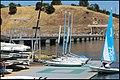 Nimbus Flats Am. River 912 - panoramio.jpg