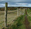 North Antrim Cliff Path - geograph.org.uk - 1256083.jpg