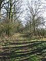 North Lane - geograph.org.uk - 697752.jpg