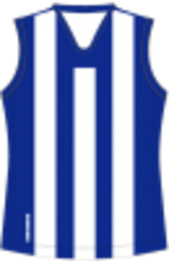 Loddon Valley Football League - Image: North Melbourne Football Guernsey