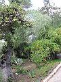 Notre-Dame de Sion IMG 0826.JPG