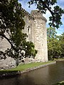Nunney Castle - geograph.org.uk - 916177.jpg