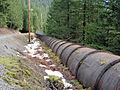 Oak Grove Fork Fish Return Pipeline.jpg