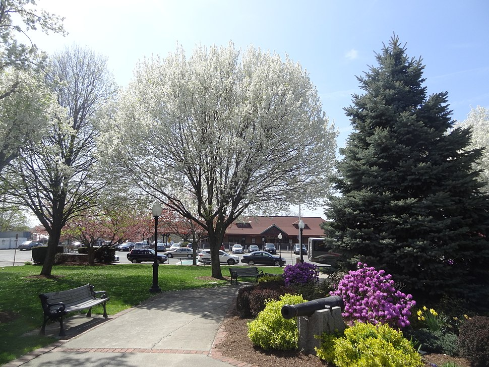 Odell Park in the Spring