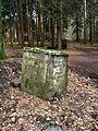 Odenwald - Linden-Hütte 2013-03-10 16-17-01.JPG
