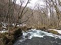 Oisase stream , 奥入瀬渓流 - panoramio (9).jpg
