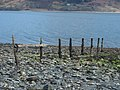 Old Fence On The Shore - geograph.org.uk - 765062.jpg