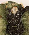 Olivenite-Quartz-207536.jpg
