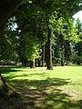 Oregon Park, PDX.jpg