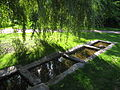 Oslo Botanical Garden - IMG 8993.jpg