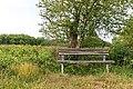 """Osterholz-Scharmbeck, Naturschutzgebiet """"Breites Wasser"""" -- 2018 -- 3001.jpg"""