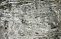 Outdoor Ice in Nature 09.jpg
