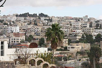 Overpopulated Amman, Jordan 2 (2009).jpg