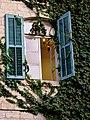 P1190887 - חלון בבית הכט. הצמחיה המטפסת מסתירה את יופיו של הבית.JPG