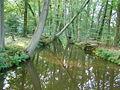 P6200189 Oelerbeek in juni.JPG