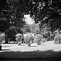 Panorama van bomen in het park van het paleis, Bestanddeelnr 255-7906.jpg