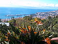 Panoramic View of Funchal from Madeira Botanical Garden.jpg