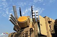 Pantsir-S1 Weapon System with radar antenna.jpg