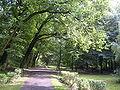 Park Fazaniec Bytom 2.jpg